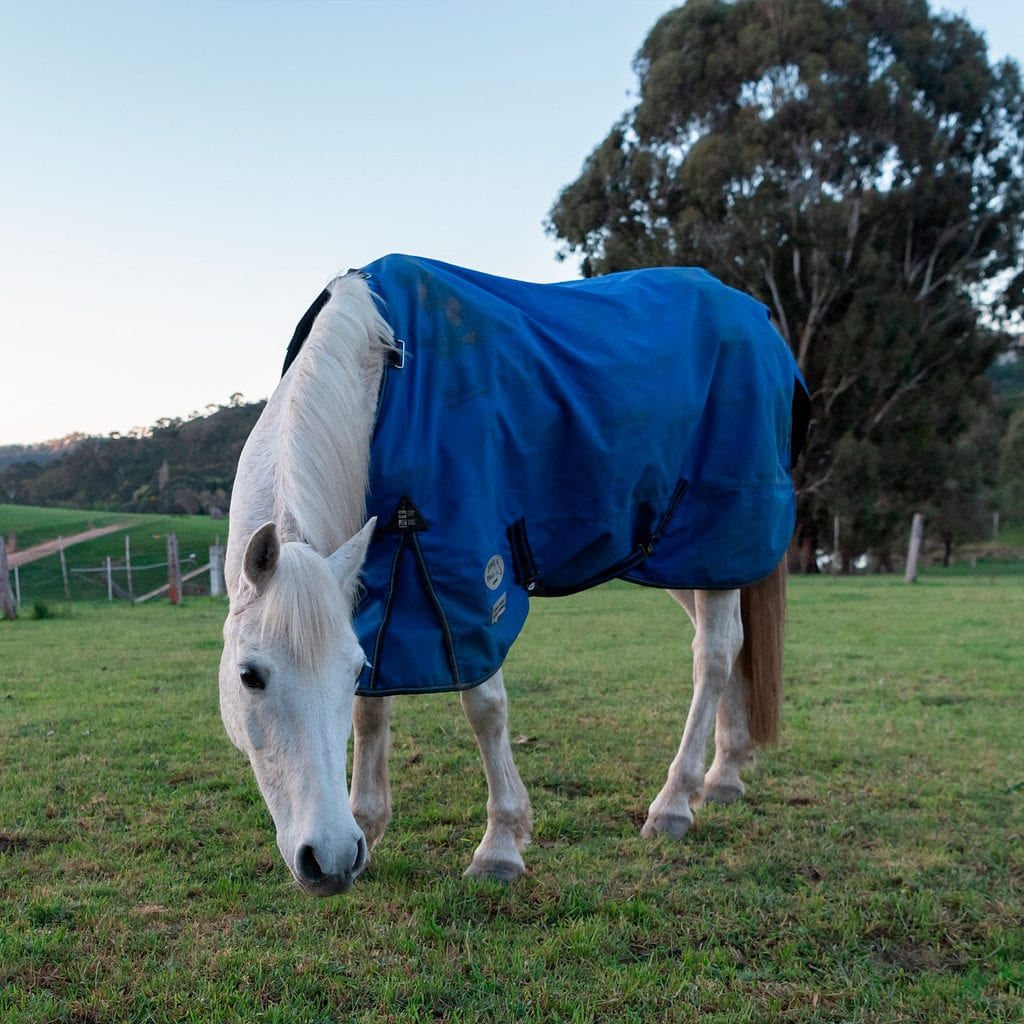 Horse Cleaning Rug Odour Remover